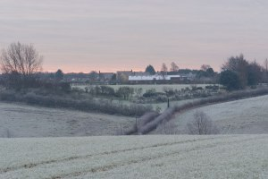 One Early Frosty Morning